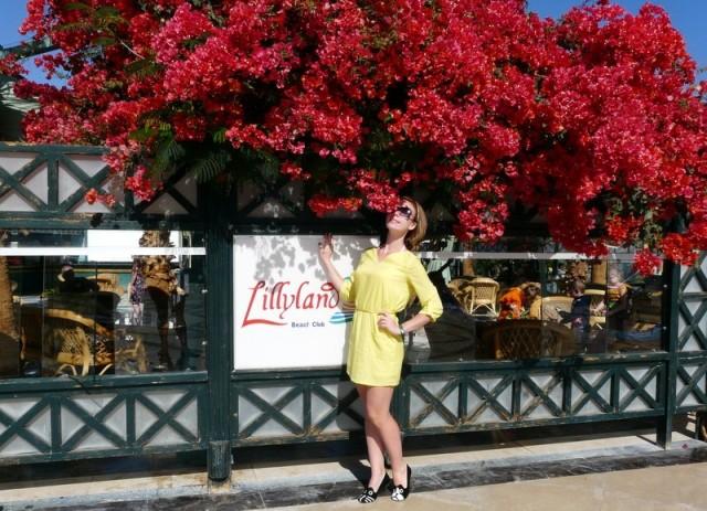 LILLYLAND AQUA PARK 4*